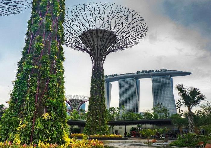 Стволы железных *деревьев* украшены настоящими растениями