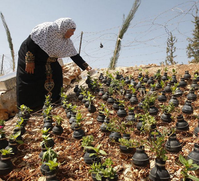 Сад-мемориал в Палестине
