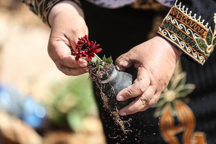 Цветы в болванках от использованных гранат