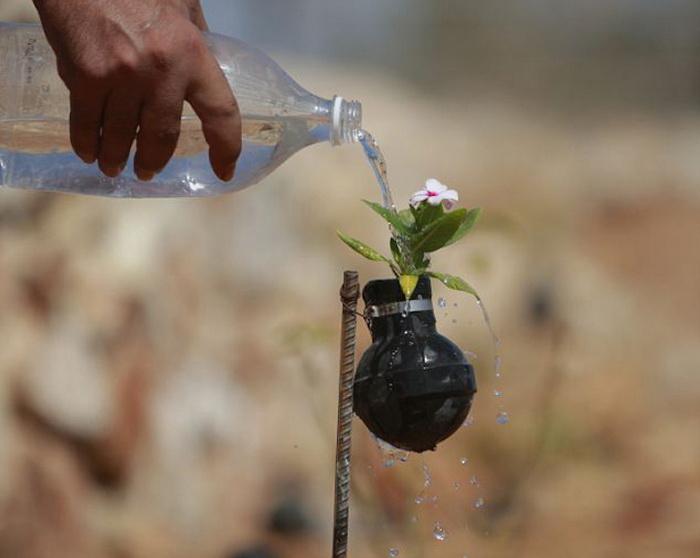 Миротворческая инициатива матери, потерявшей сына на войне