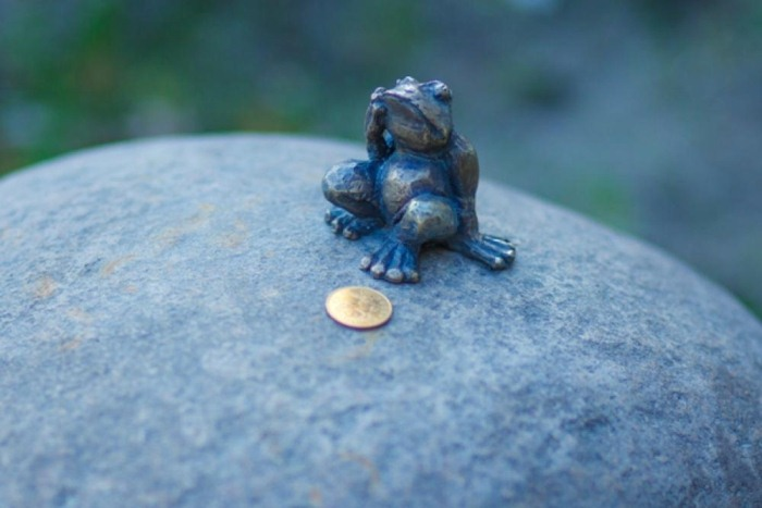 Лягушка-путешественница из Томска