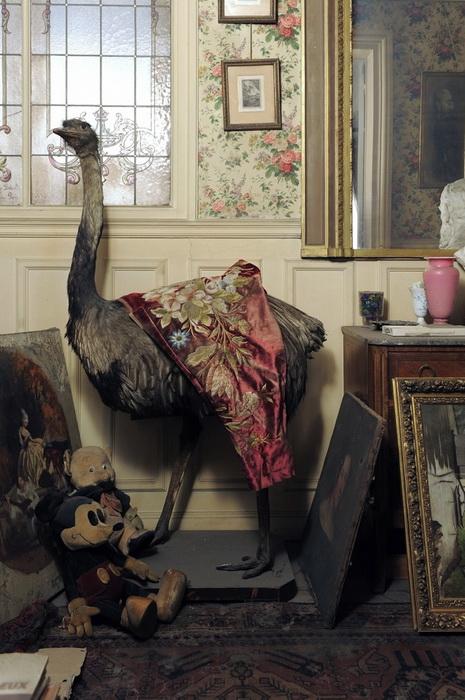 Апартаменты мадам де Флориан простояли нетронутыми 70 лет