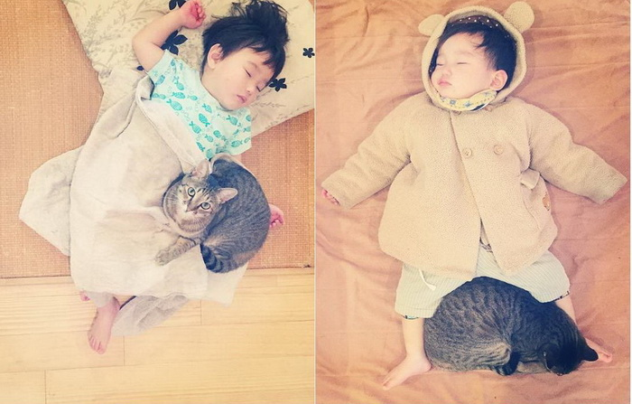 Кот стал настоящим ангелом-хранителем для маленького мальчика