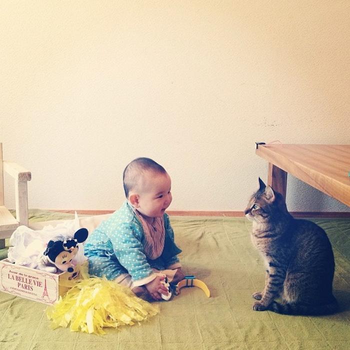 Игра Говорящий кот Том 5: Говорящий котёнок! - Multoigri ru