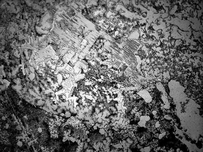 Слезы под микроскопом: фотопроект от Розы-Линн Фишер (Rose-Lynn Fisher)