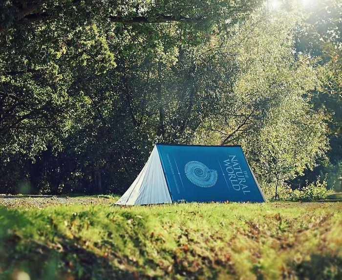 Палатка в виде книги