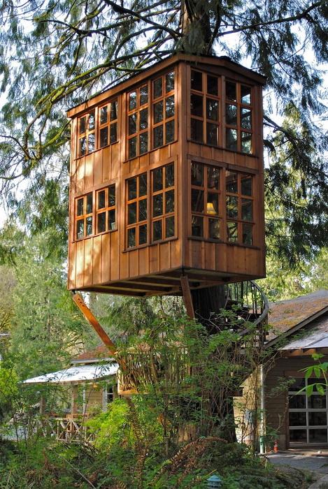 Пит Нельсон (Pete Nelson) - дизайнер домов на деревьях