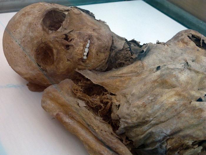 Тела, погребенные в XIV веке, сохранились до наших дней.