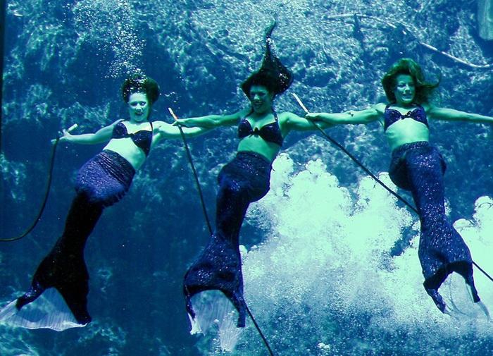 Парк развлечений Weeki Wachee Springs во Флориде