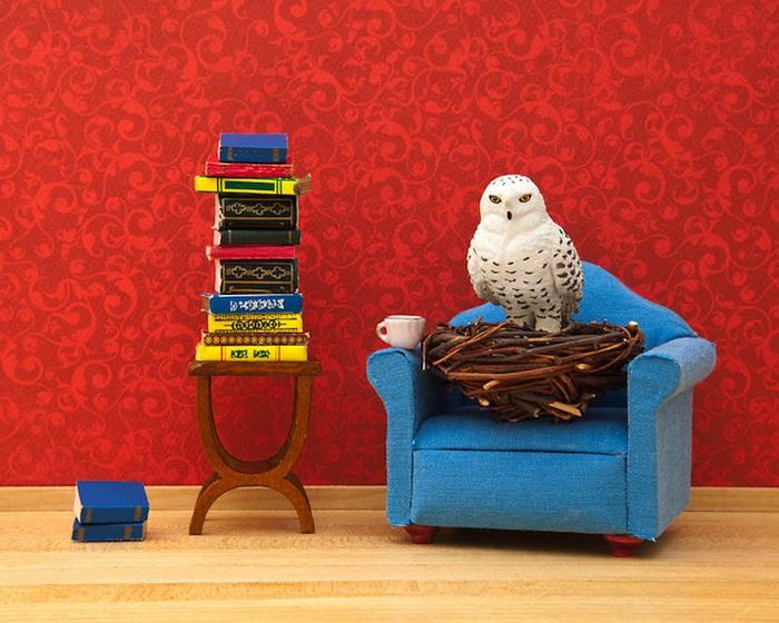 Тайная жизнь игрушек в фотопроекте Джеффа Фрисена. Сова-маг Фредерик