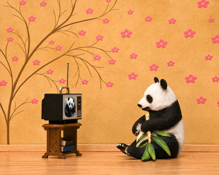Тайная жизнь игрушек в фотопроекте Джеффа Фрисена. Панда-мечтательница Chi Chi