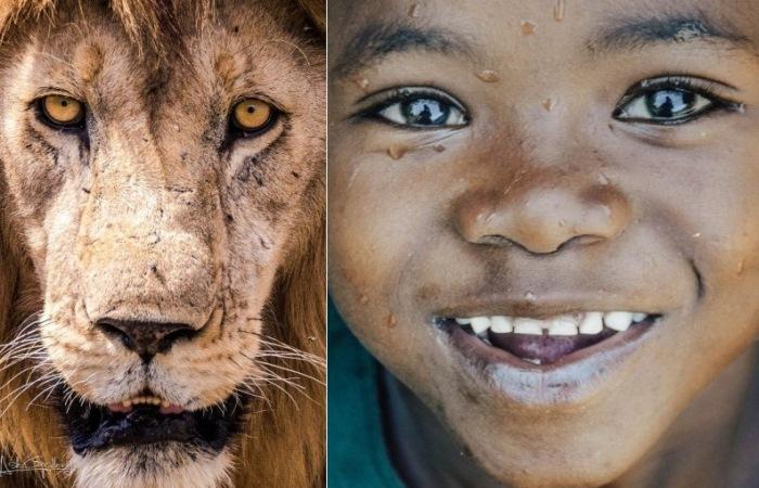 Фотографии Занзибара от талантливого местного художника.