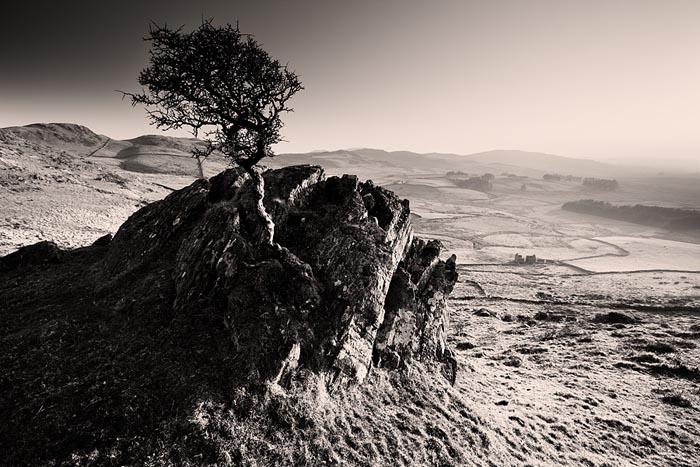 Удивительные пейзажы Глина Дэвиса