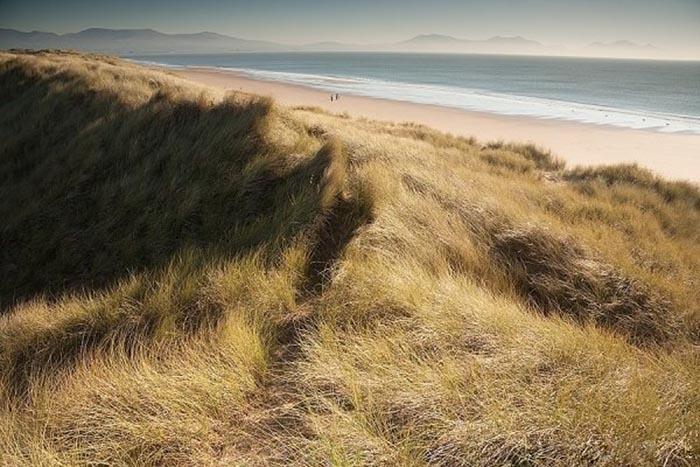 Одна из самых известных пейзажных фотографий Глина Дэвиса Vast Uncertainty