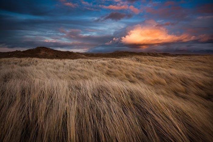 Живописные пейзажи на фото Глина Дэвиса