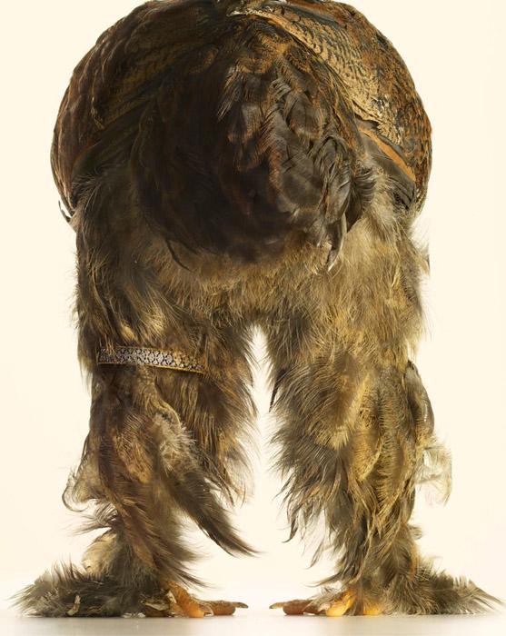 Редкие породы кур и бижутерия класса люкс на фотографиях Питера Липмана