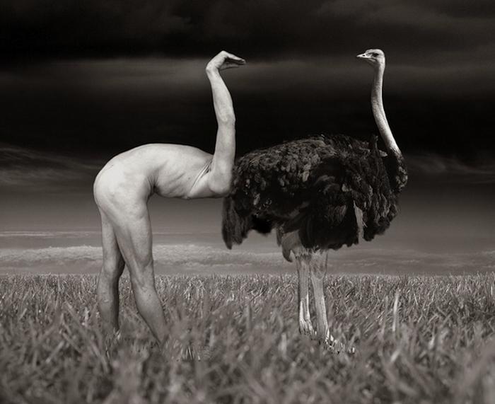 Фотография Thomas Barbey