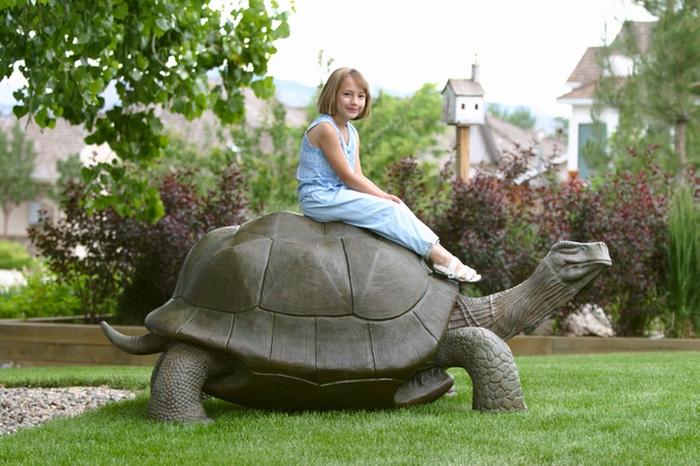 Черепаха Джордж