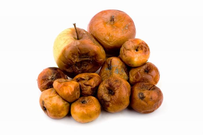 Гнилые яблоки, как символ замусоривания планеты в фотоработе Joe Buglewitz