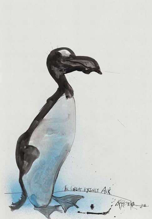Бескрылая гагарка. Рисунок Ralph Steadman