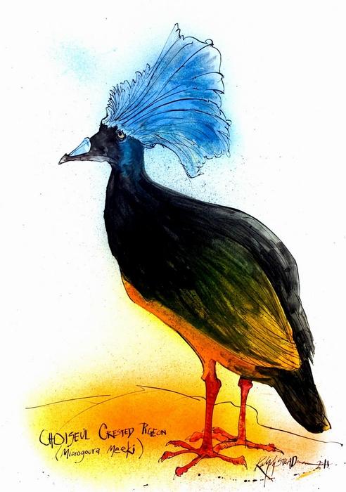 Одна из extinct boids Ральфа Стедмана