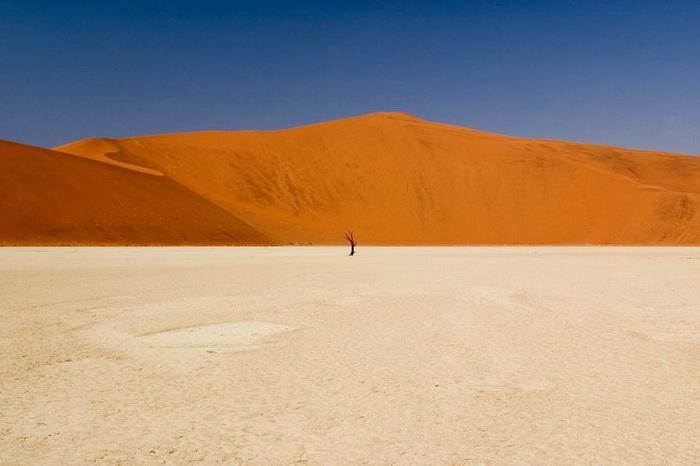 Мёртвая долина (Dead Vlei), Намибия