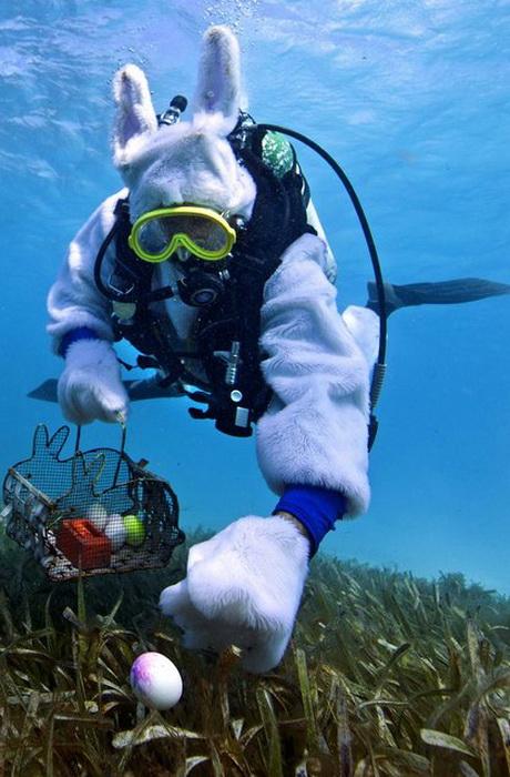 Спенсер Слэйт (Spencer Slate) в образе подводного Пасхального кролика