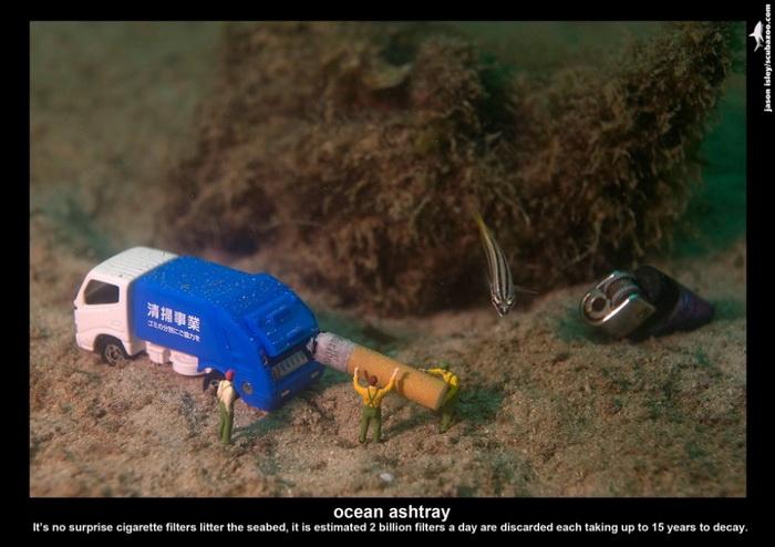 Маленькие подводные обитатели на снимках Джейсона Айзли (Jason Isley)