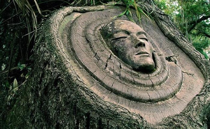 http://www.kulturologia.ru/files/u15094/keith-jennings-tree-1.jpg