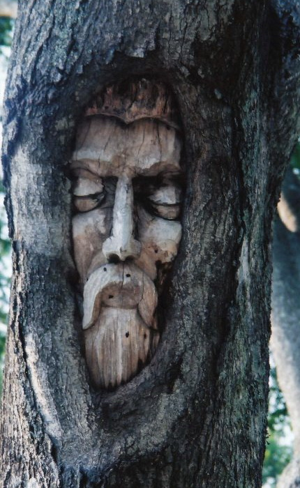 Проект Кита Дженнингса (Keith Jennings) «Tree Spirits»