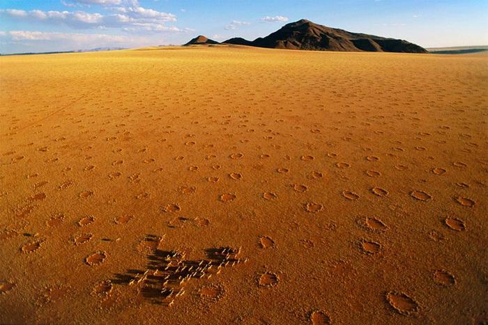 Загадочные пятна на полях Намибии