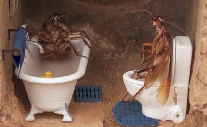 Остроумная реклама средства от тараканов «Doom Fogger»
