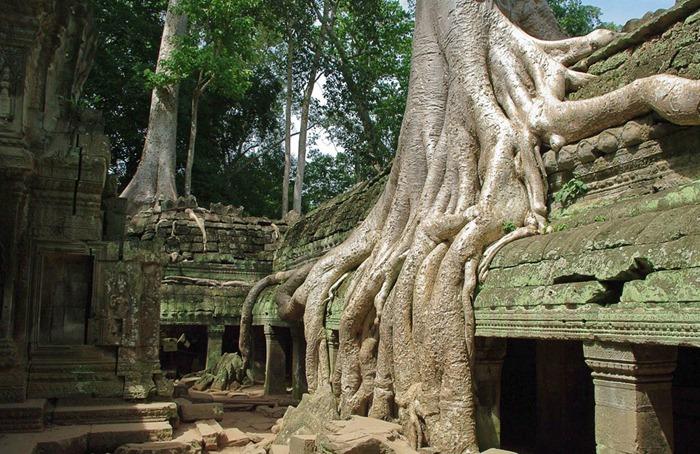 Величественный монастырский комплекс Та-Прохм (Ta Prohm), Камбоджа
