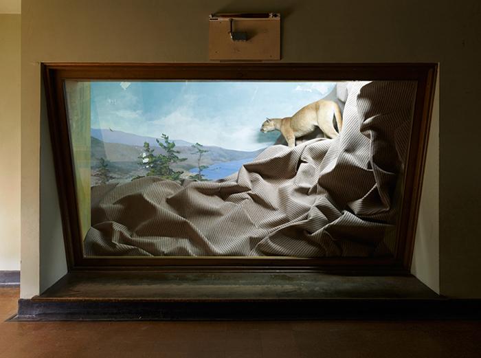 Проект Алоиса Кроншлегера Habitat