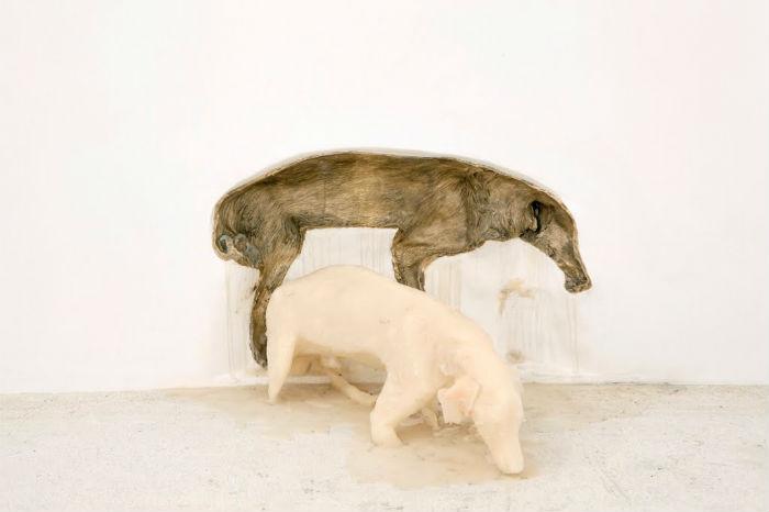 Необычные исталляции Татианы Бласс