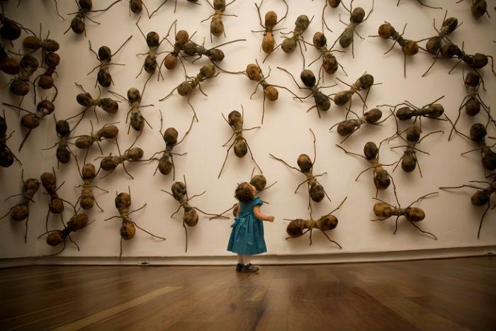 Инсталляции с изображением гигантских муравьёв из стекловолокна уже стали визитной карточкой колумбийца Рафаэля Гомезбарроса