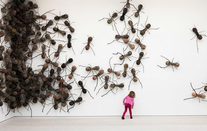 Не так давно лондонская Saatchi Gallery приютила у себя муравьиное семейство до 2 февраля 2015 года