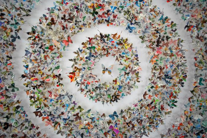 Ребекка Коулз увлечена созданием очаровательных пёстрых композиций из бумажных бабочек
