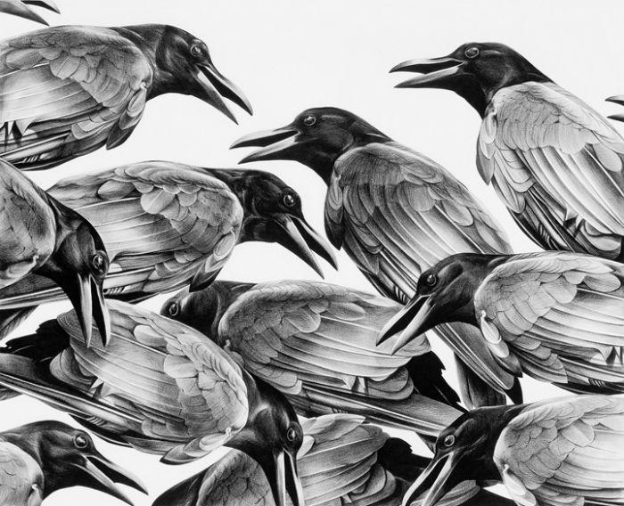 Фотореалистичные карандашные рисунки американской художницы