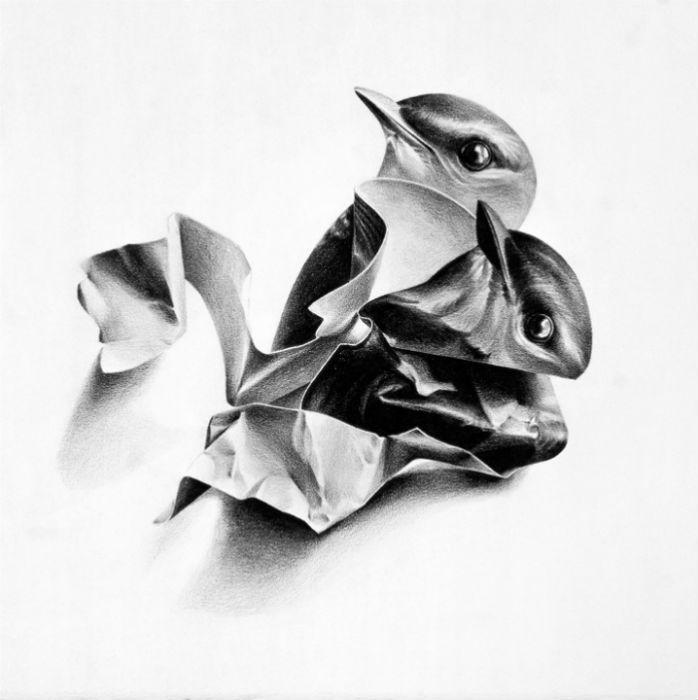 Карандашные иллюстрации художницы из Сан-Франциско Кристины Эмпедокл