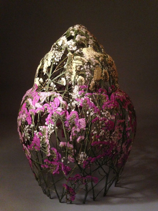 Удивительный гербарий Игнасио Арасиля