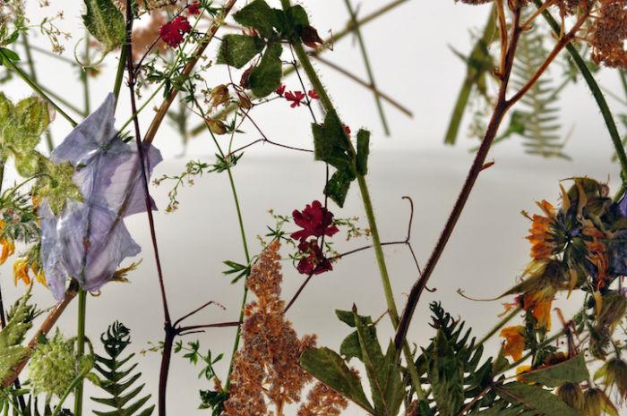 По замыслу автора, скульптуры из сухих цветов призваны сохранить в себе застывшую во времени красоту весны и жизни