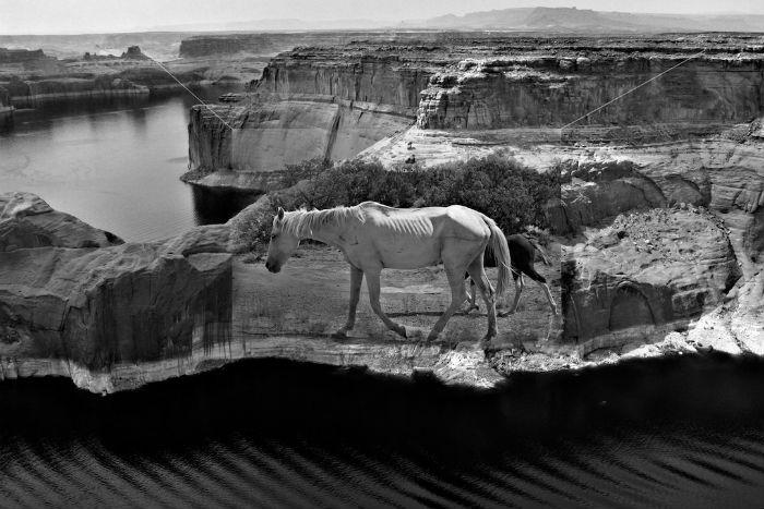«Recollected Memories» («Объединённые воспоминания») - ностальгические коллажи от американского фотографа
