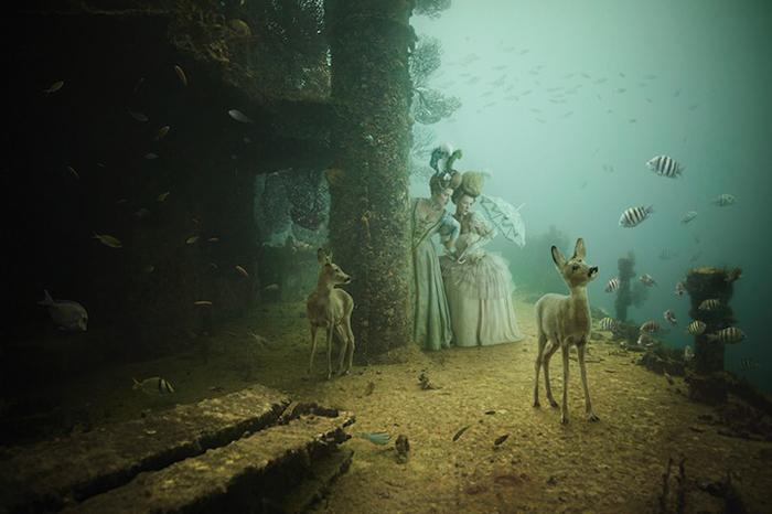 Роскошная жизнь на морском дне от Андреаса Франке