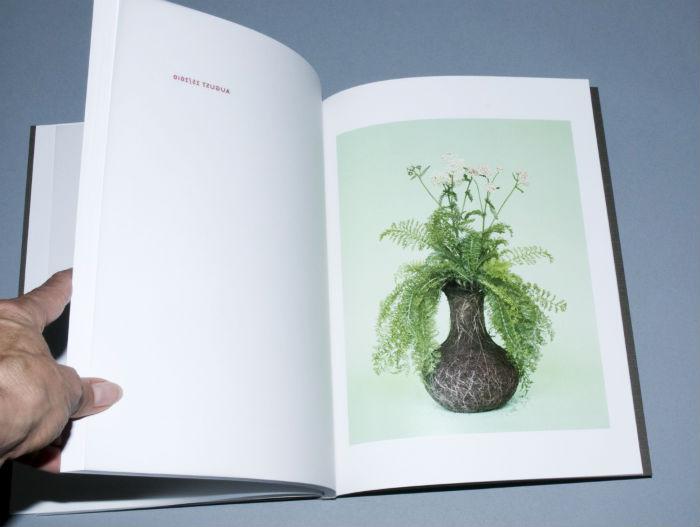 Для проекта «Nurture Studies» фотограф Диана Шерер на протяжении полугода выращивала цветы из семян