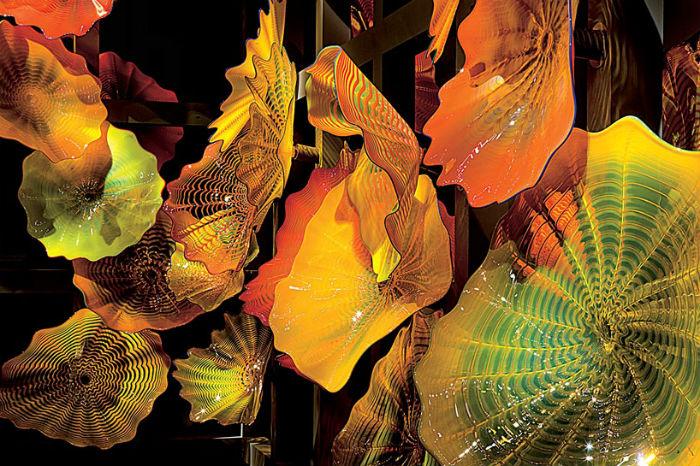 19 июня текущего года в дублинской галерее Solomon Fine Art открылась выставка известнейшего мастера-стекловара Дейла Чихули