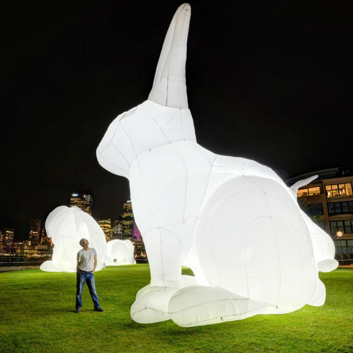 Не так давно в Лондоне появилась занятная инсталляция, изображающая нескольких белых кроликов