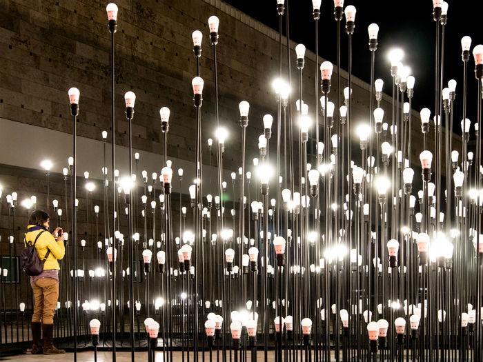 Основной целью проекта архитекторы называют знакомство зрителей со светодиодными технологиями в качестве альтернативы обычным лампочкам накаливания.