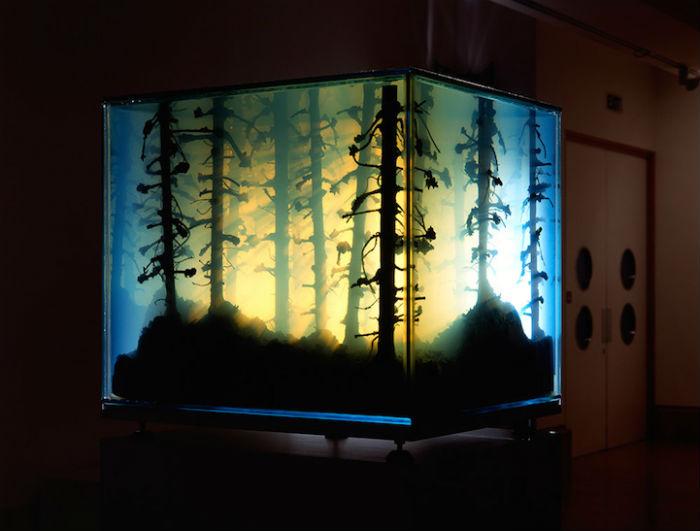 Трёхмерные пейзажи в аквариумах: удивительный проект немецкой художницы