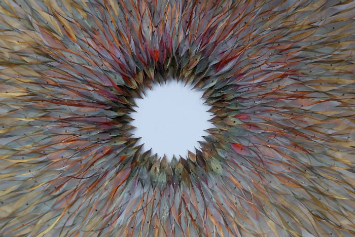 В поиске новых идей художница обращается к природным формам